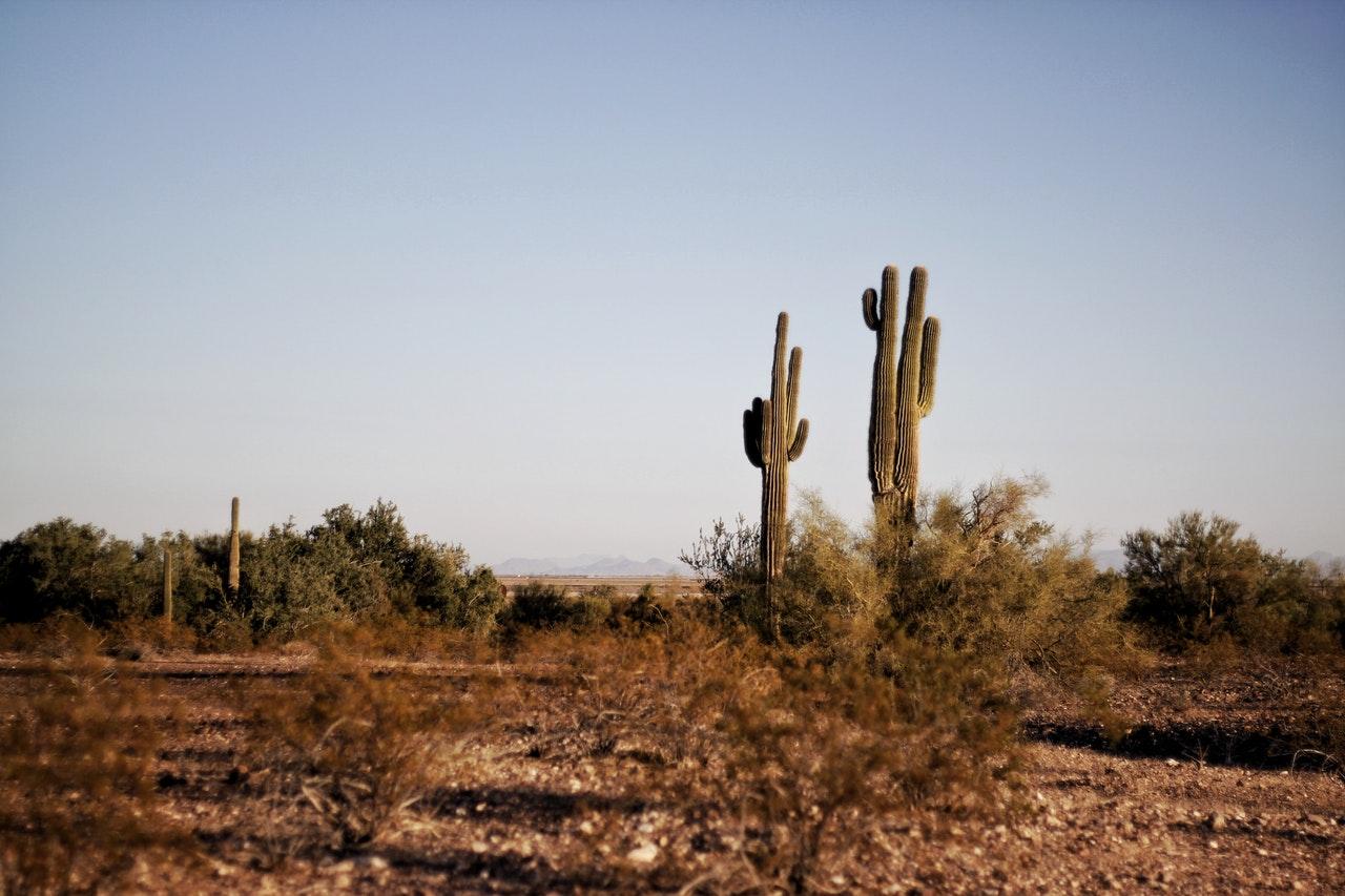 Filing for divorce in arizona solutioingenieria Images