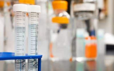 [INFOGRAPHIC] Drug Testing in Family Courts: Understanding the Basics